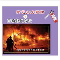 原装正版 安全月 常见火灾预防与正确扑救方法 2DVD 企业安全学习视频 光盘