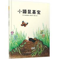 小鼹鼠嘉宝--启发精选世界优秀畅销绘本