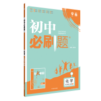 理想树2019新版 初中必刷题 化学九年级上册 沪教版 67初中自主学习