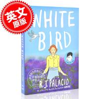现货 白鸟 英文原版 彩色漫画 精装 WHITE BIRD: A WONDER STORY 奇迹男孩系列作者 R. J