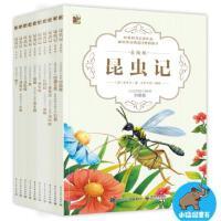 电子工业:昆虫记 美绘版(全10册)