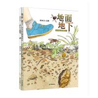 耕林童书馆・生态科普绘本(全2册 池上池下 地面地下)