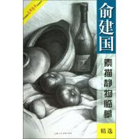 美术技法名师指导实战系列:俞建国素描静物临摹精选 9787532285006