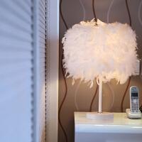 欧式时尚羽毛落地台灯结婚庆北欧装饰灯具卧室床头创意客厅小灯饰