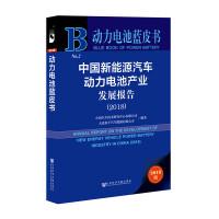 动力电池蓝皮书:中国新能源汽车动力电池产业发展报告(2018)