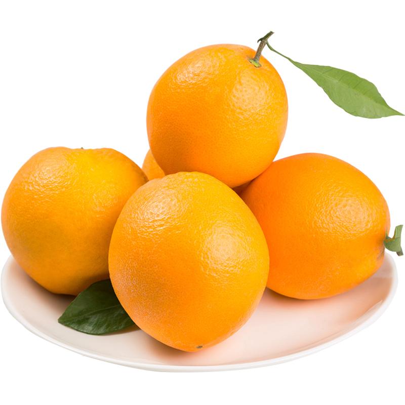 【章贡馆】赣南脐橙 新鲜现摘橙子精品10斤装(80-85mm)原产地直供 包邮自然成熟,橙香浓郁,香甜多汁