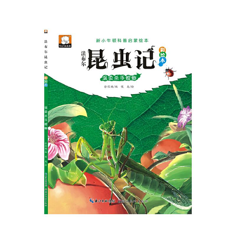 法布尔昆虫记(彩绘本)·温柔杀手螳螂