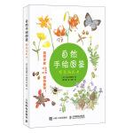 自然手绘图鉴 野花与昆虫