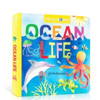 英文原版幼儿科普百科绘本 Hello, World! 你好,世界系列:ocean life 海洋生命 儿童启蒙早教益智