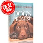 现货 一条狗的承诺 英文原版 A Dog's Promise W.布鲁斯・卡梅隆 W. Bruce Cameron 一