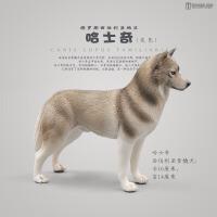 仿真动物玩具狗狗模型恶霸杜宾斗牛犬家犬宠物狗实心儿童玩具