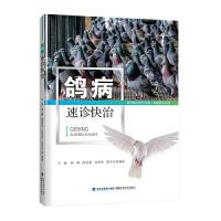 【鸽病速诊快治】鸽子高效养殖书+鸽病诊断与防治书籍+ 肉鸽养殖书籍+鸽子常见病+多发病新发病的鉴别诊断与治疗方法养鸽子的