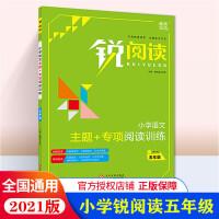 2020版 锐阅读小学语文阅读训练100篇 五年级 配送教师用书答案册 小学5年级语文阅读训练100篇