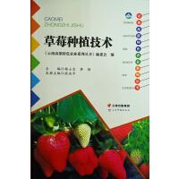 云南高原特色农业系列丛书――草莓种植技术