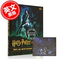 现货 哈利波特电影艺术宝典 卷一 森林 湖泊和天空生物 英文原版Harry Potter:Film Vault:Vol