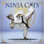 【预订】Ninja Cats 2020 Wall Calendar 9781549207280