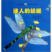 亲近自然奇妙的小动物:迷人的蜻蜓 [美] 琳达・格拉泽,米娅・波萨达 绘,胡梦迪 9787531342762