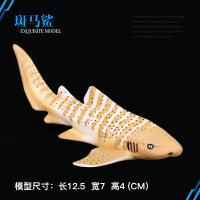 模型斑马鲨 鲨鱼 大白鲨模型儿童仿真海洋生物野生动物玩具